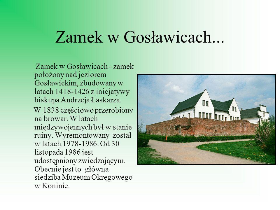 Zamek w Gosławicach...