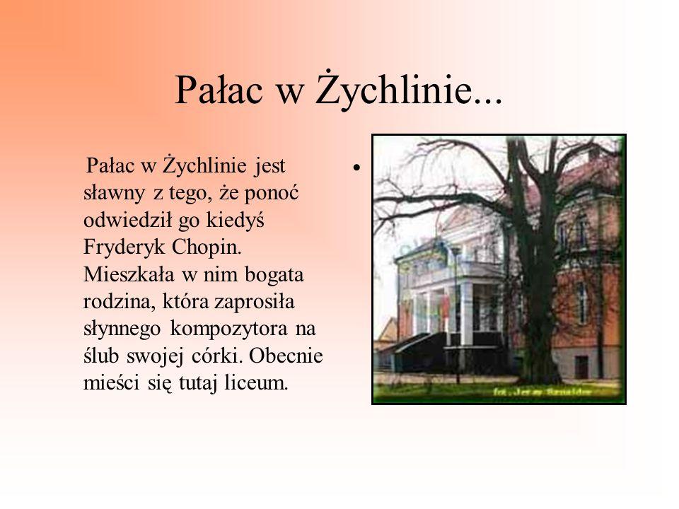 Pałac w Żychlinie...
