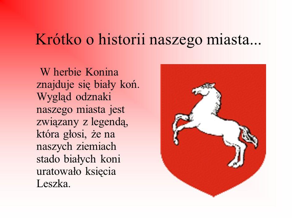 Krótko o historii naszego miasta...