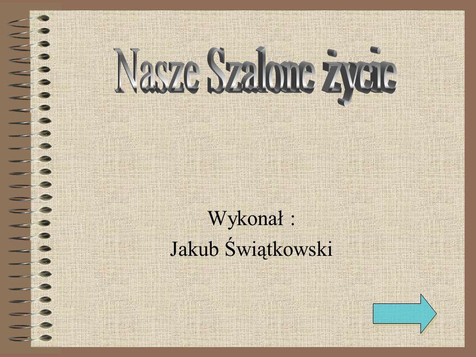 Wykonał : Jakub Świątkowski