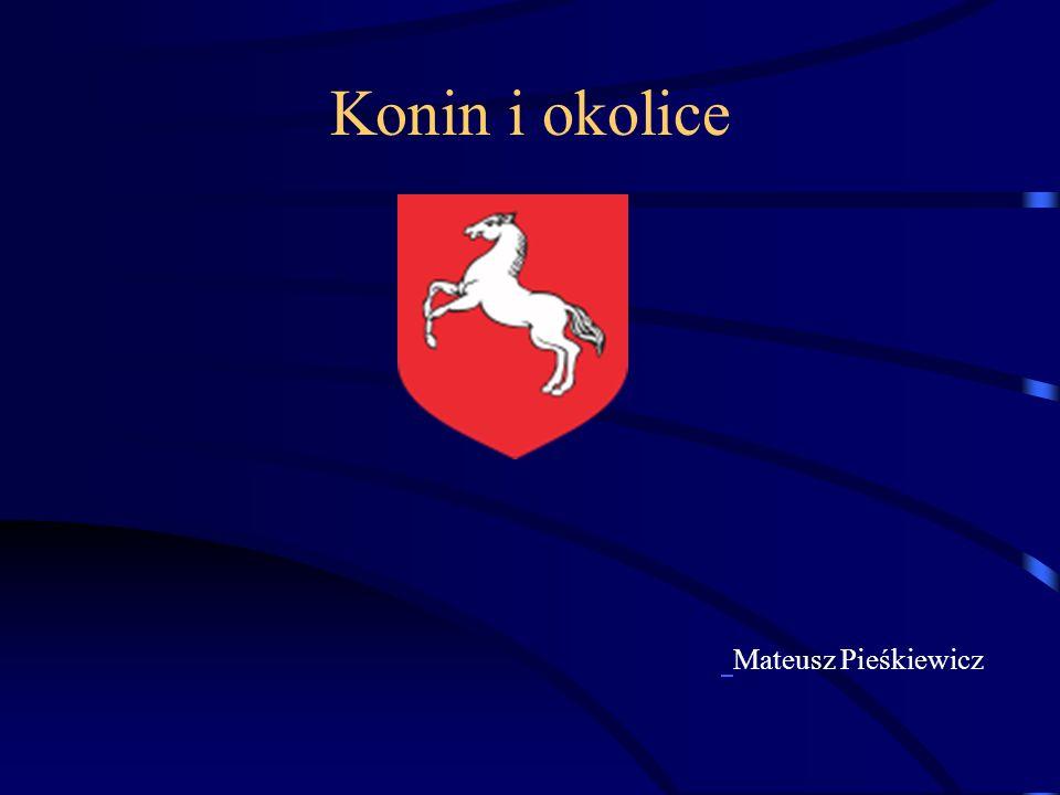 Konin i okolice Mateusz Pieśkiewicz