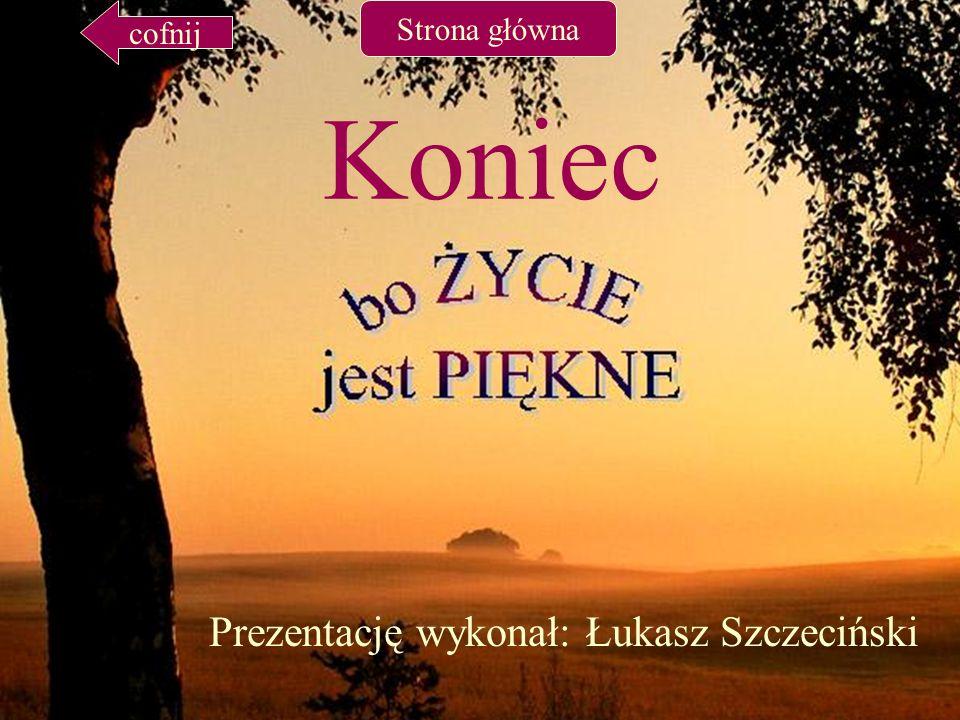 Prezentację wykonał: Łukasz Szczeciński