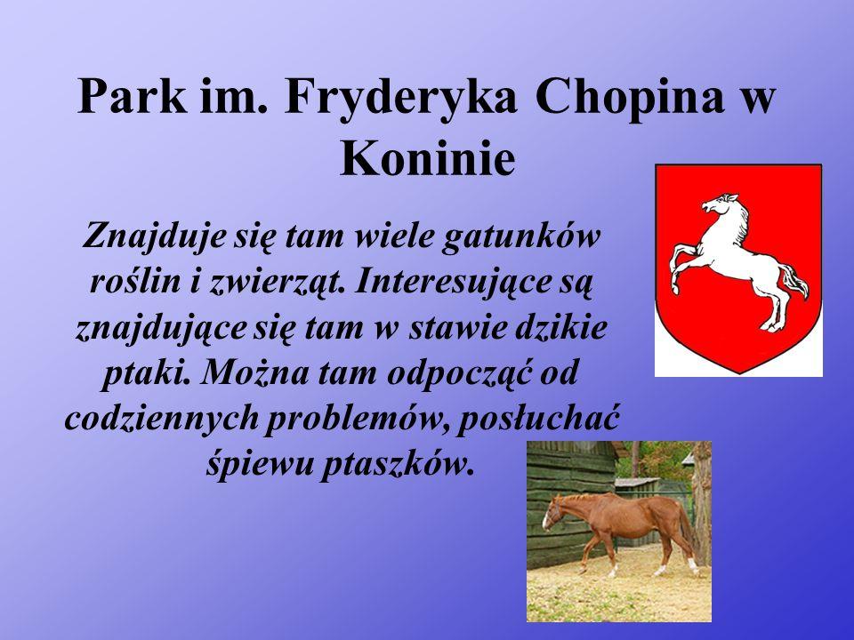 Park im. Fryderyka Chopina w Koninie