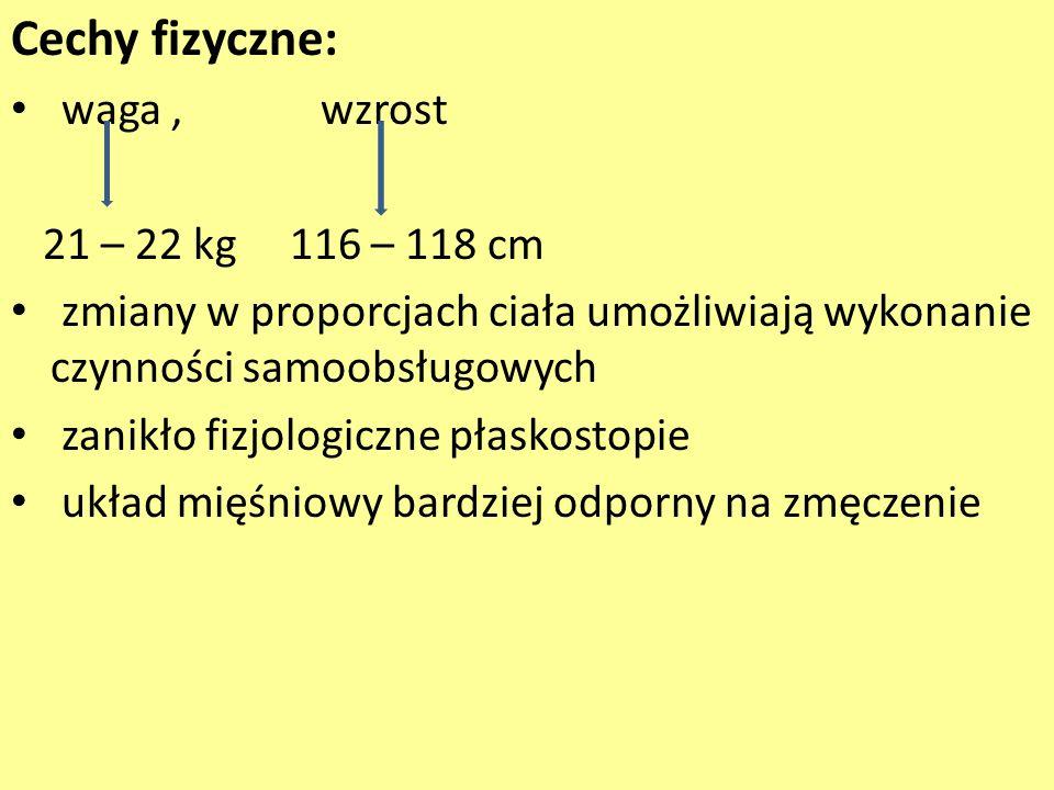Cechy fizyczne: waga , wzrost 21 – 22 kg 116 – 118 cm