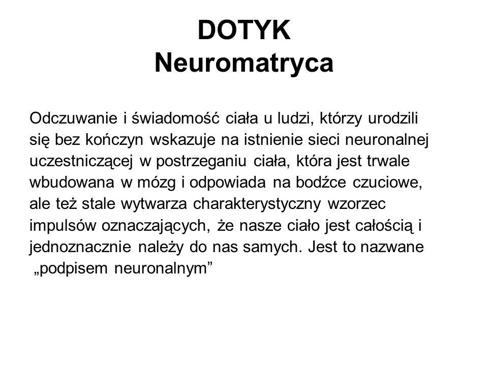 DOTYK Neuromatryca Odczuwanie i świadomość ciała u ludzi, którzy urodzili. się bez kończyn wskazuje na istnienie sieci neuronalnej.