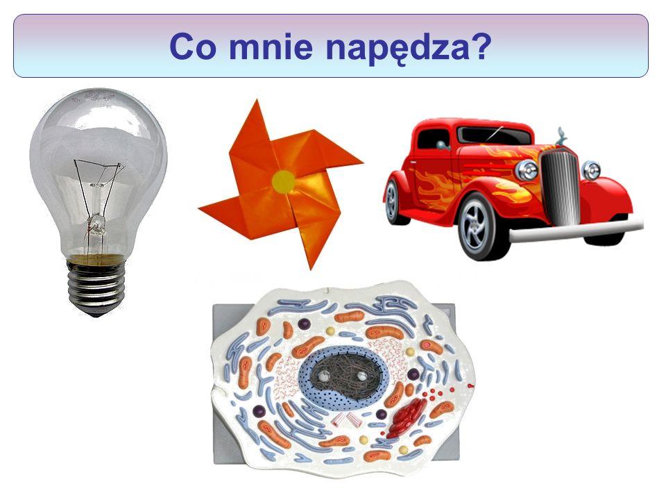 Co mnie napędza http//www.meeritu.isu.pl