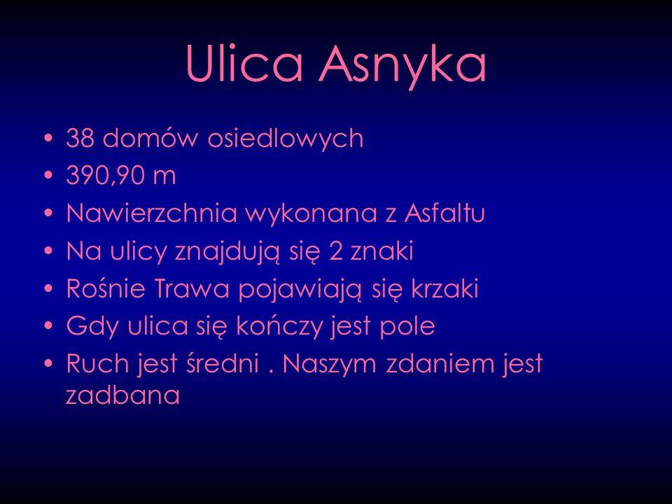 Ulica Asnyka 38 domów osiedlowych 390,90 m
