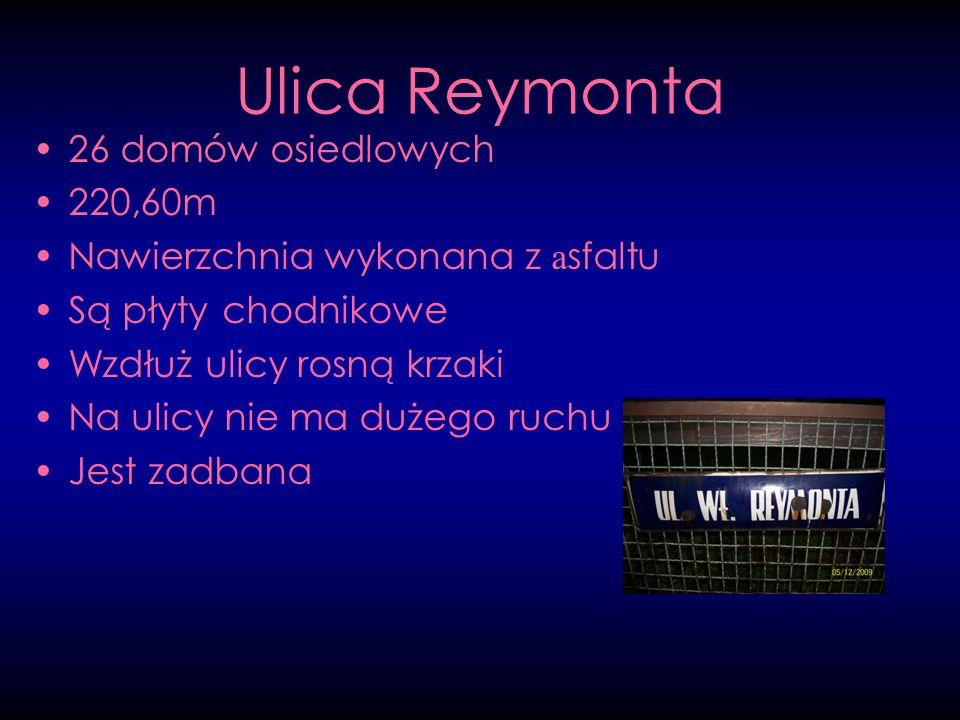 Ulica Reymonta 26 domów osiedlowych 220,60m