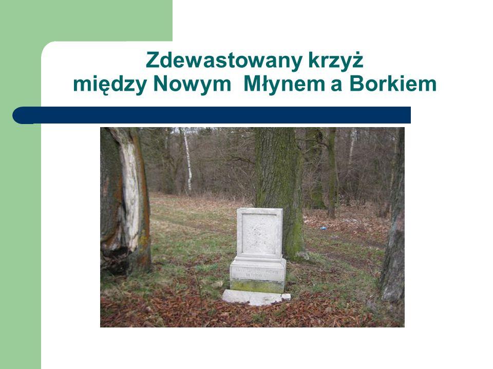Zdewastowany krzyż między Nowym Młynem a Borkiem