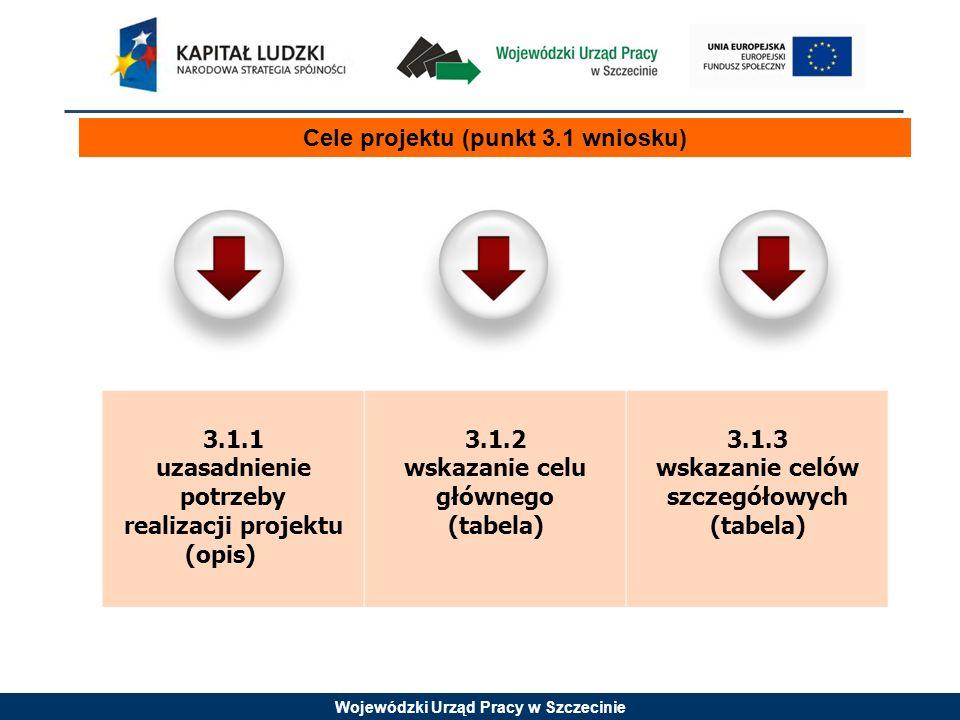 Cele projektu (punkt 3.1 wniosku)