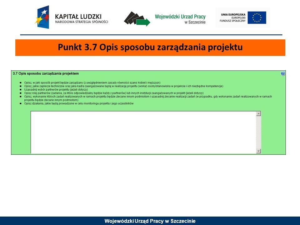 Punkt 3.7 Opis sposobu zarządzania projektu