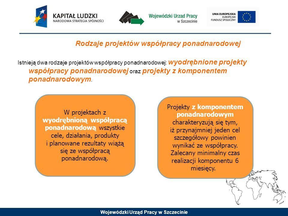 Rodzaje projektów współpracy ponadnarodowej Istnieją dwa rodzaje projektów współpracy ponadnarodowej: wyodrębnione projekty współpracy ponadnarodowej oraz projekty z komponentem ponadnarodowym.