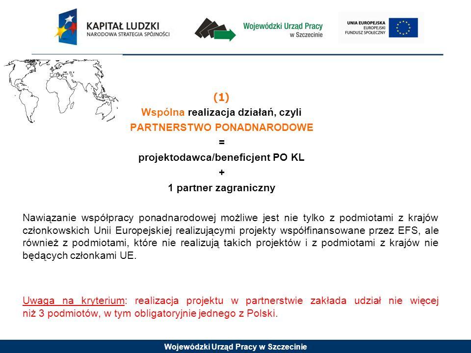 (1) Wspólna realizacja działań, czyli PARTNERSTWO PONADNARODOWE = projektodawca/beneficjent PO KL + 1 partner zagraniczny Nawiązanie współpracy ponadnarodowej możliwe jest nie tylko z podmiotami z krajów członkowskich Unii Europejskiej realizującymi projekty współfinansowane przez EFS, ale również z podmiotami, które nie realizują takich projektów i z podmiotami z krajów nie będących członkami UE.