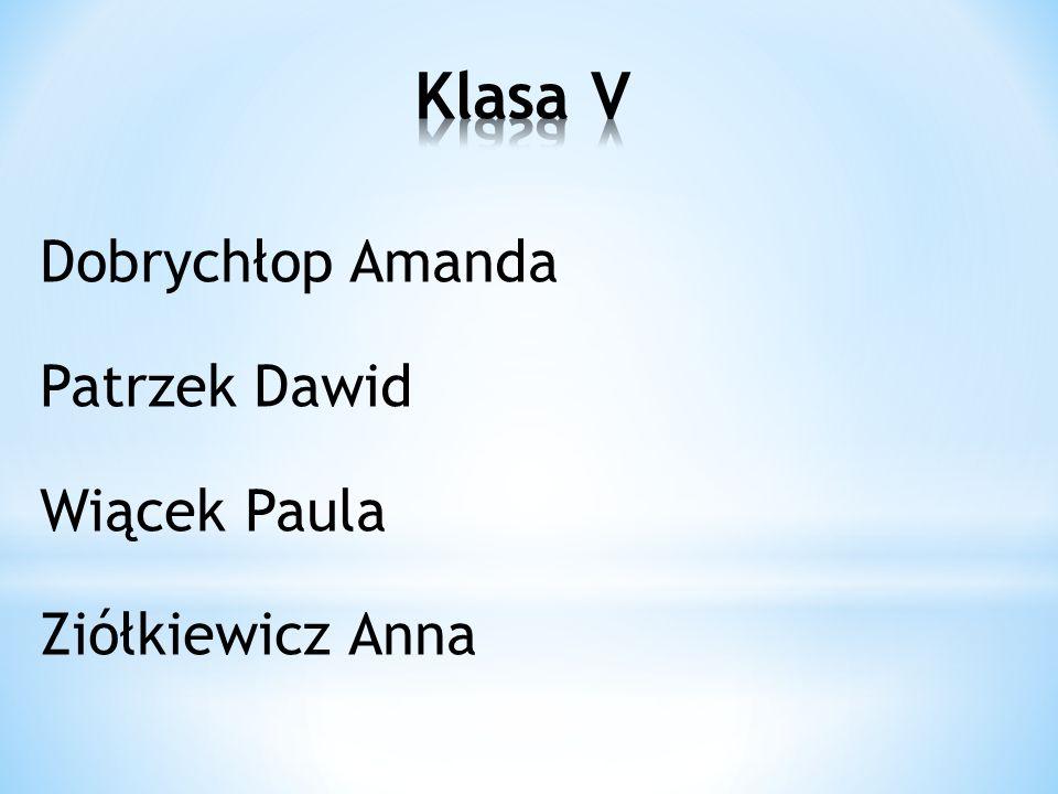 Klasa V Dobrychłop Amanda Patrzek Dawid Wiącek Paula Ziółkiewicz Anna