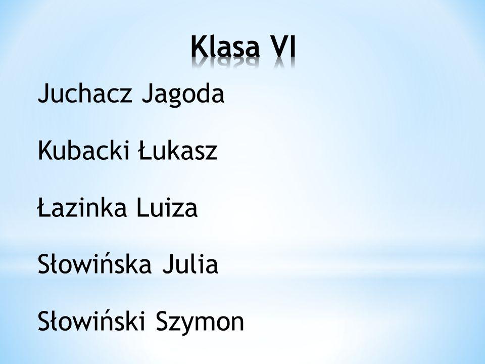 Klasa VI Juchacz Jagoda Kubacki Łukasz Łazinka Luiza Słowińska Julia Słowiński Szymon