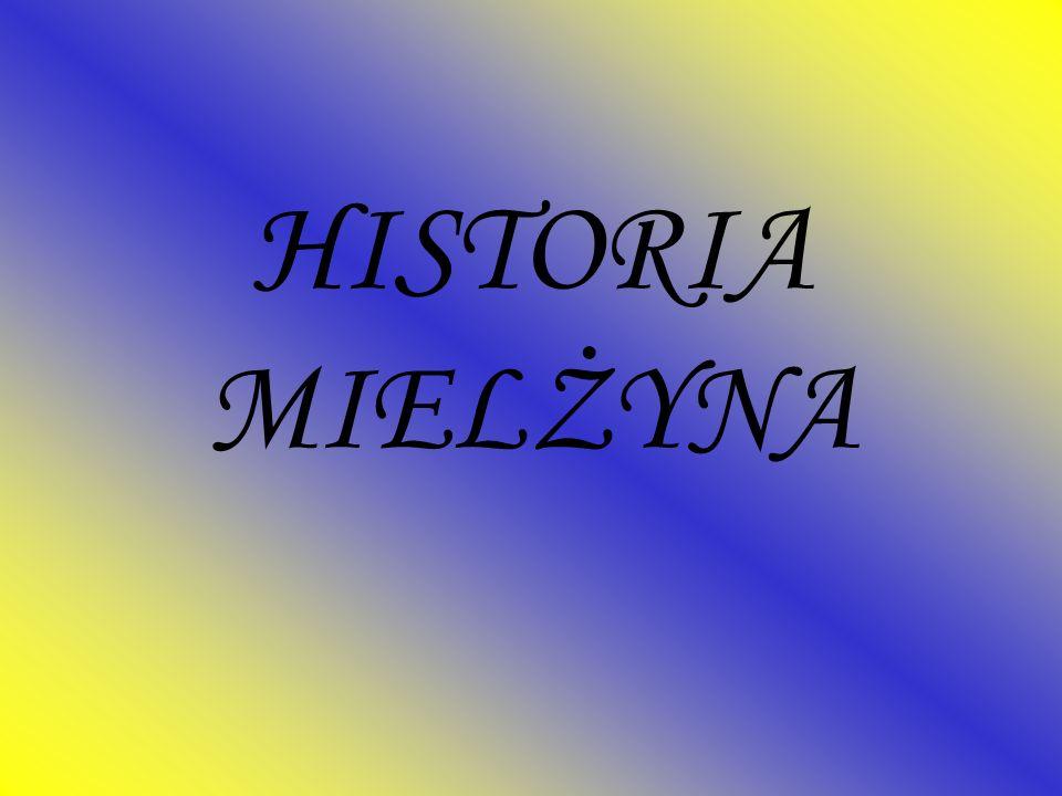 HISTORIA MIELŻYNA
