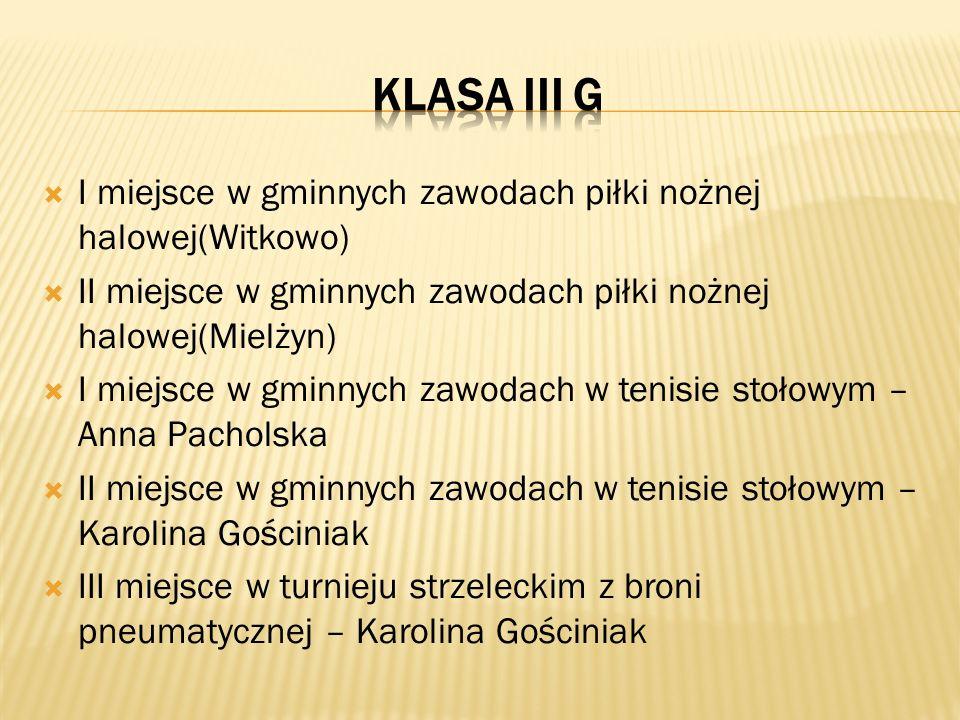 Klasa iii g I miejsce w gminnych zawodach piłki nożnej halowej(Witkowo) II miejsce w gminnych zawodach piłki nożnej halowej(Mielżyn)
