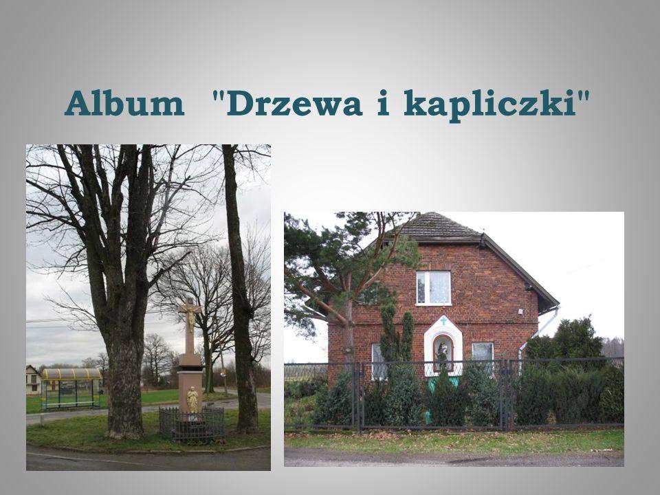 Album Drzewa i kapliczki