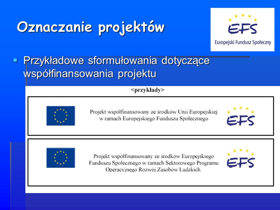 Oznaczanie projektów Przykładowe sformułowania dotyczące współfinansowania projektu
