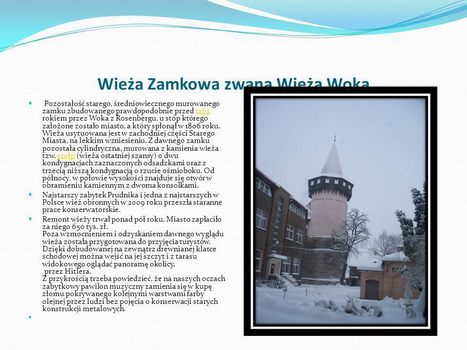 Wieża Zamkowa zwana Wieżą Woka