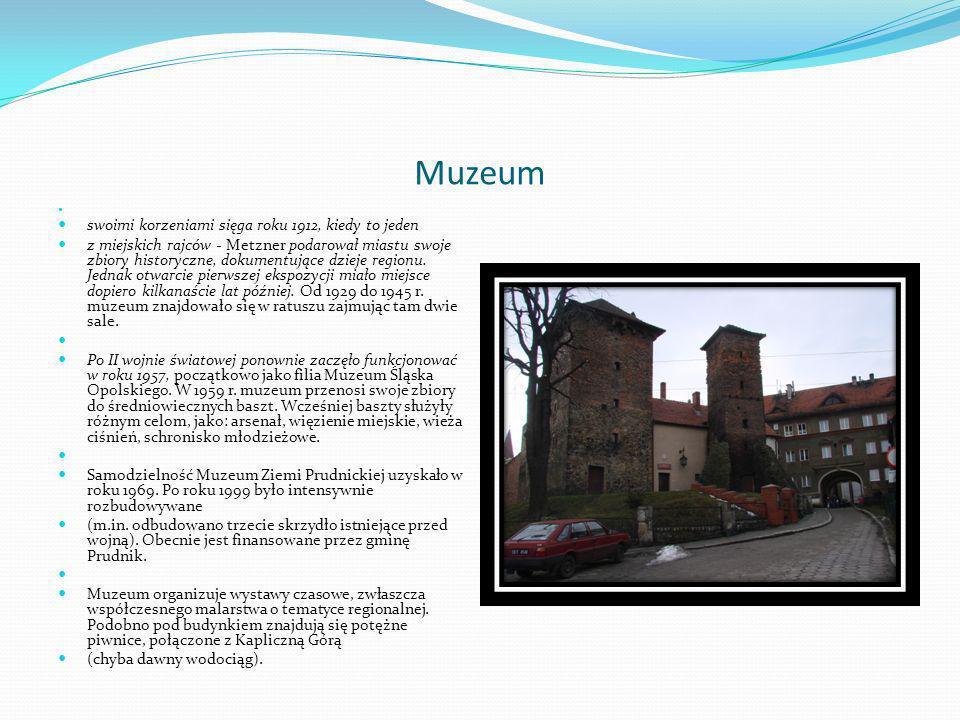 Muzeum swoimi korzeniami sięga roku 1912, kiedy to jeden