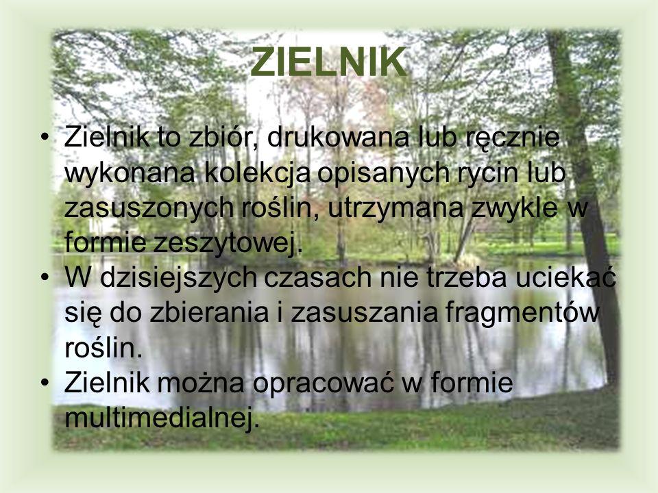 ZIELNIK Zielnik to zbiór, drukowana lub ręcznie wykonana kolekcja opisanych rycin lub zasuszonych roślin, utrzymana zwykle w formie zeszytowej.