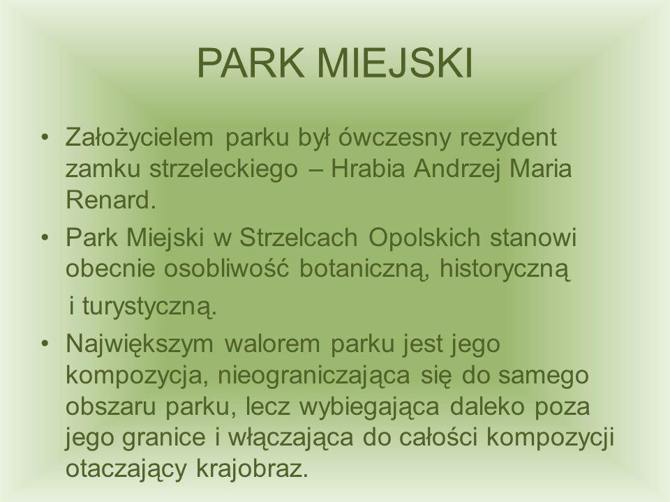 PARK MIEJSKI Założycielem parku był ówczesny rezydent zamku strzeleckiego – Hrabia Andrzej Maria Renard.
