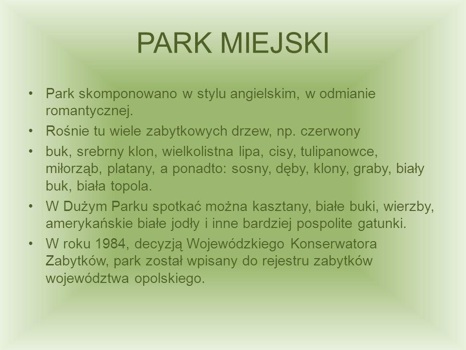 PARK MIEJSKI Park skomponowano w stylu angielskim, w odmianie romantycznej. Rośnie tu wiele zabytkowych drzew, np. czerwony.