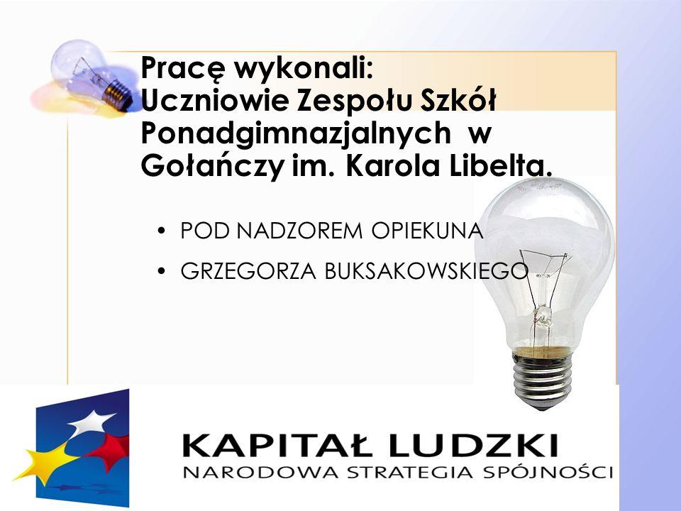 Pracę wykonali: Uczniowie Zespołu Szkół Ponadgimnazjalnych w Gołańczy im. Karola Libelta.