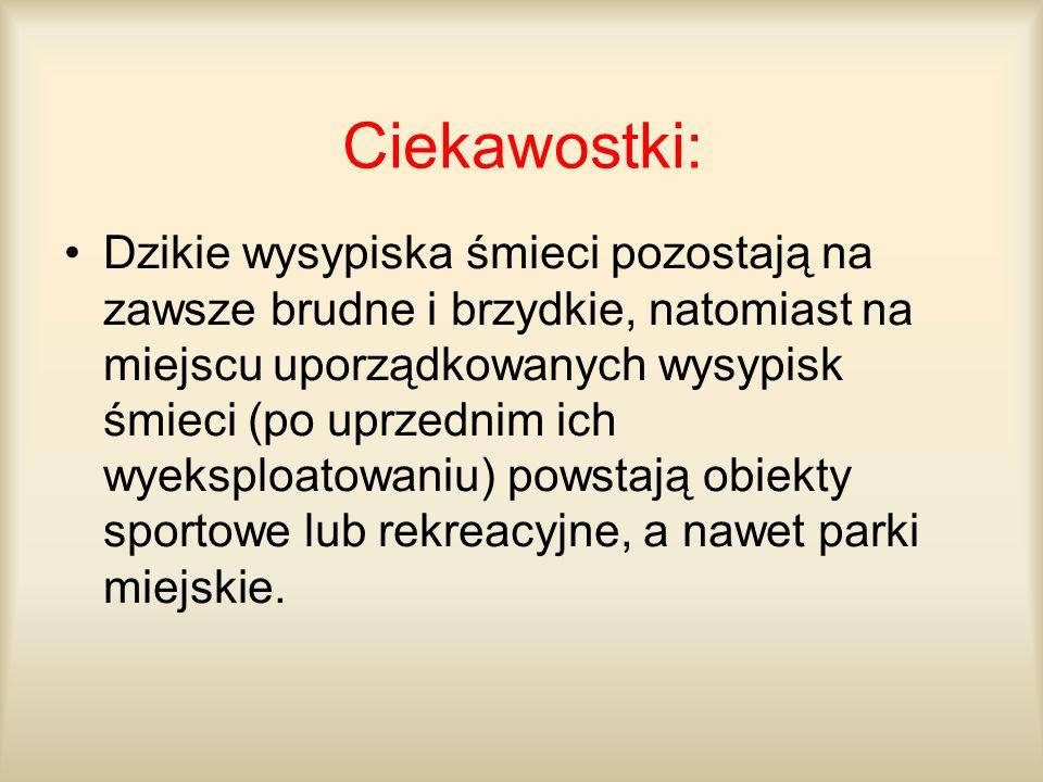 Ciekawostki: