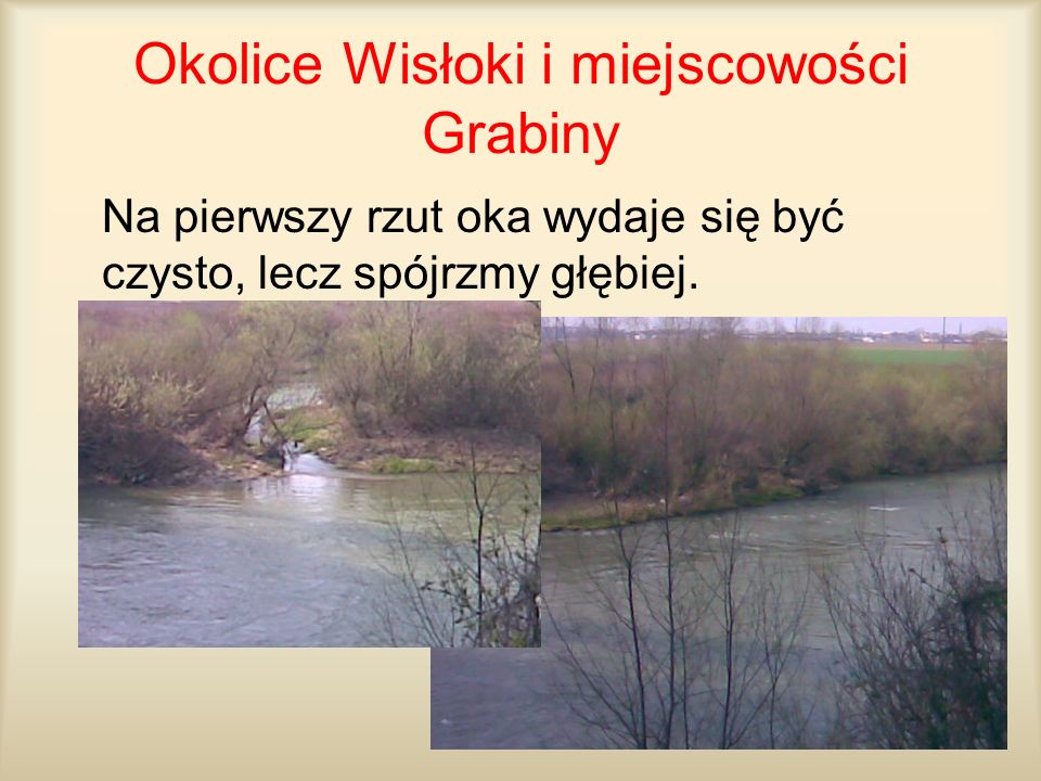 Okolice Wisłoki i miejscowości Grabiny