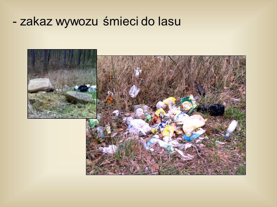 - zakaz wywozu śmieci do lasu