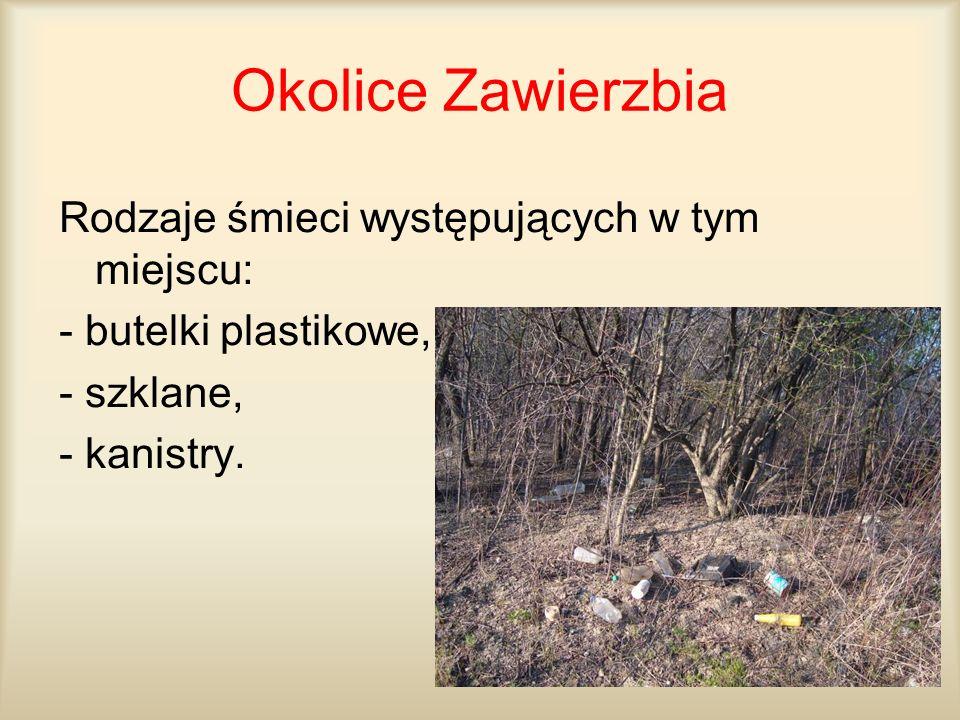 Okolice Zawierzbia Rodzaje śmieci występujących w tym miejscu: