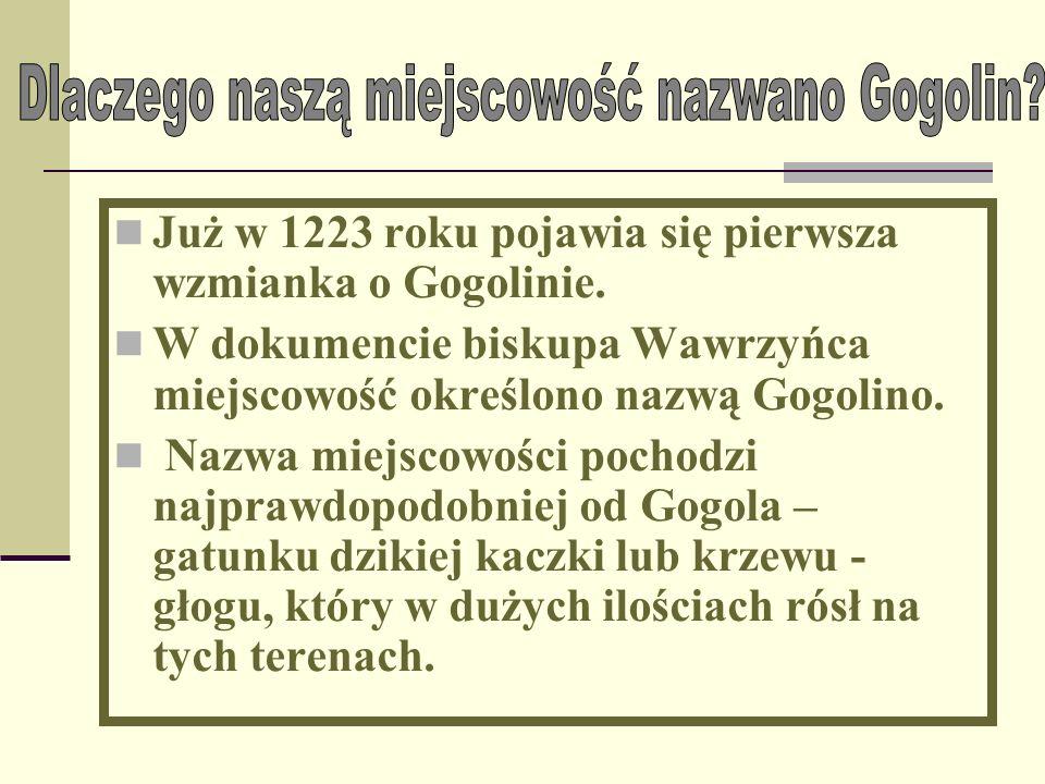 Dlaczego naszą miejscowość nazwano Gogolin