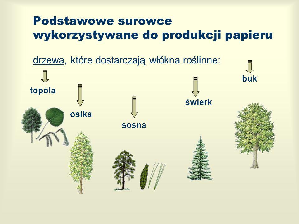 Podstawowe surowce wykorzystywane do produkcji papieru