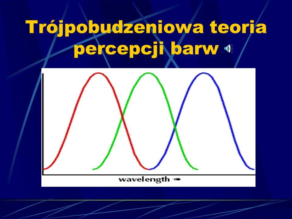 Trójpobudzeniowa teoria percepcji barw