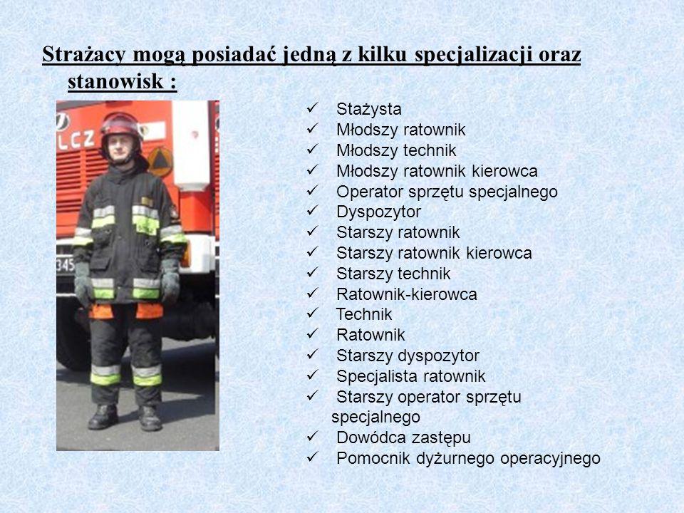Strażacy mogą posiadać jedną z kilku specjalizacji oraz stanowisk :