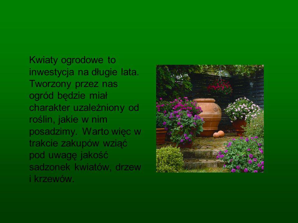 Kwiaty ogrodowe to inwestycja na długie lata