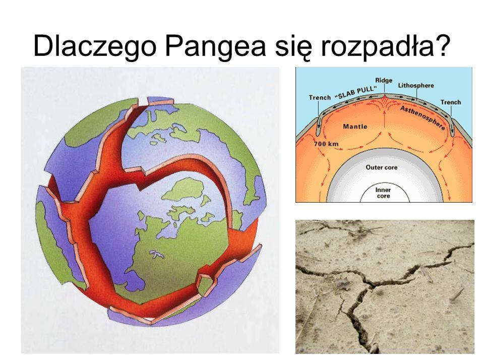 Dlaczego Pangea się rozpadła