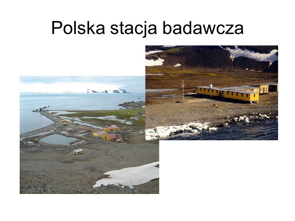 Polska stacja badawcza