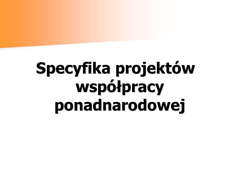 Specyfika projektów współpracy ponadnarodowej
