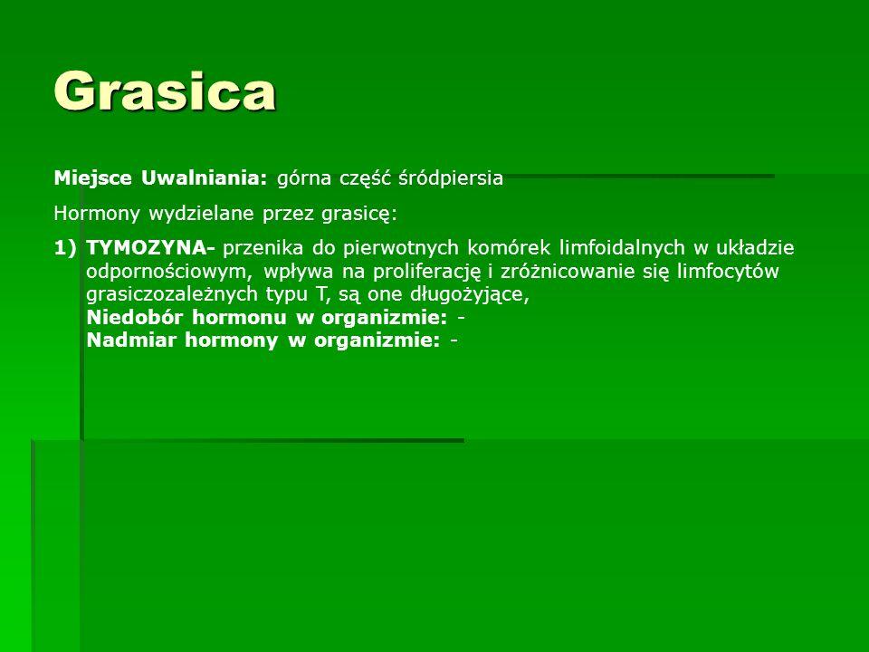 Grasica Miejsce Uwalniania: górna część śródpiersia