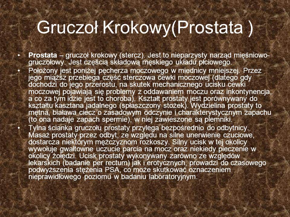 Gruczoł Krokowy(Prostata )