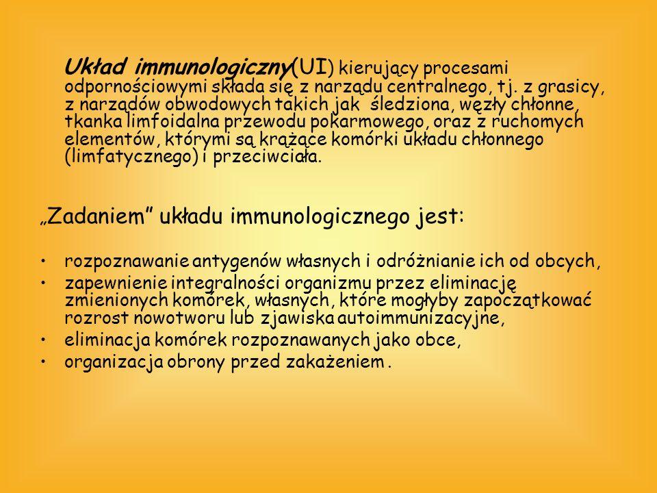 Układ immunologiczny(UI) kierujący procesami odpornościowymi składa się z narządu centralnego, tj. z grasicy, z narządów obwodowych takich jak śledziona, węzły chłonne, tkanka limfoidalna przewodu pokarmowego, oraz z ruchomych elementów, którymi są krążące komórki układu chłonnego (limfatycznego) i przeciwciała.
