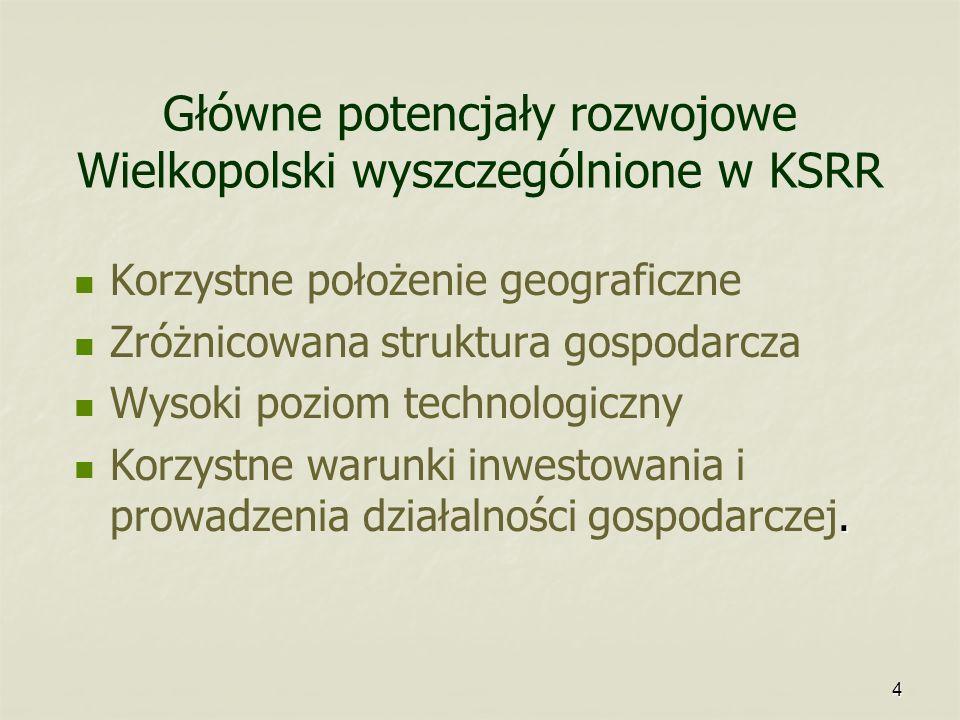 Główne potencjały rozwojowe Wielkopolski wyszczególnione w KSRR