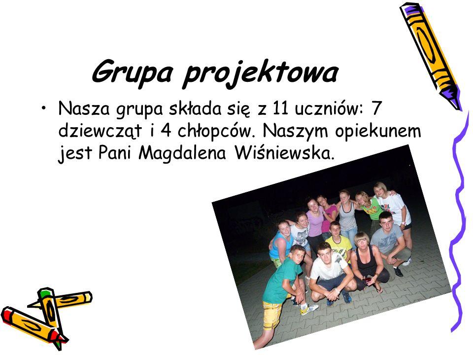 Grupa projektowa Nasza grupa składa się z 11 uczniów: 7 dziewcząt i 4 chłopców.
