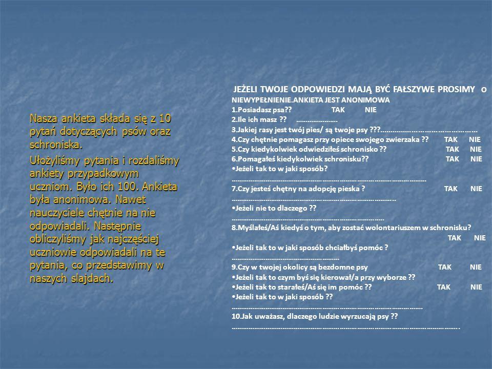 Nasza ankieta składa się z 10 pytań dotyczących psów oraz schroniska.