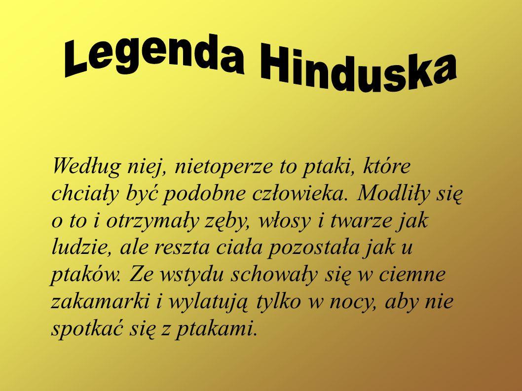 Legenda Hinduska