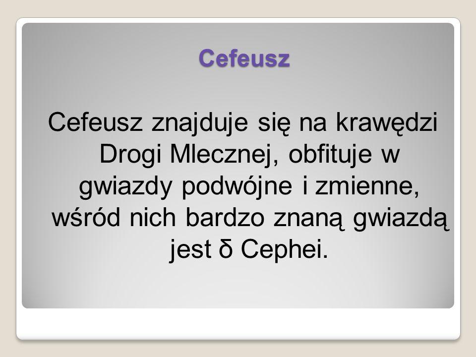 Cefeusz Cefeusz znajduje się na krawędzi Drogi Mlecznej, obfituje w gwiazdy podwójne i zmienne, wśród nich bardzo znaną gwiazdą jest δ Cephei.