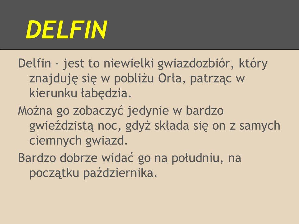 DELFIN Delfin - jest to niewielki gwiazdozbiór, który znajduję się w pobliżu Orła, patrząc w kierunku łabędzia.